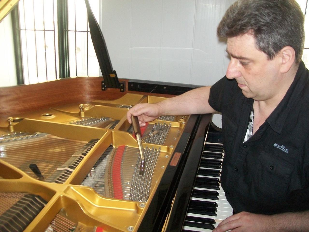 Afinador técnico de pianos . Lisboa - 1/5