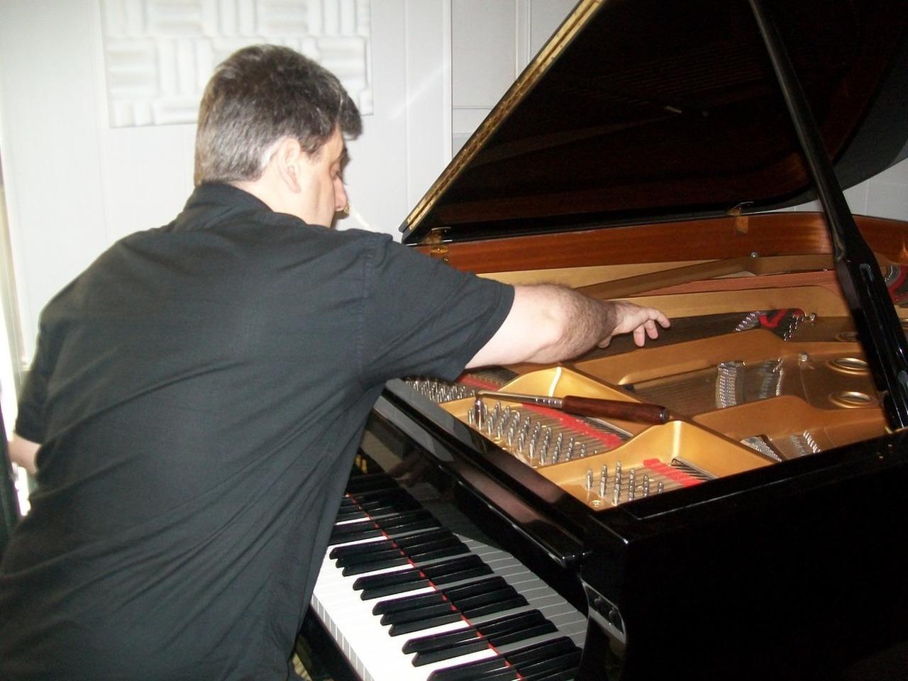 Afinador técnico de pianos . Lisboa - 3/5