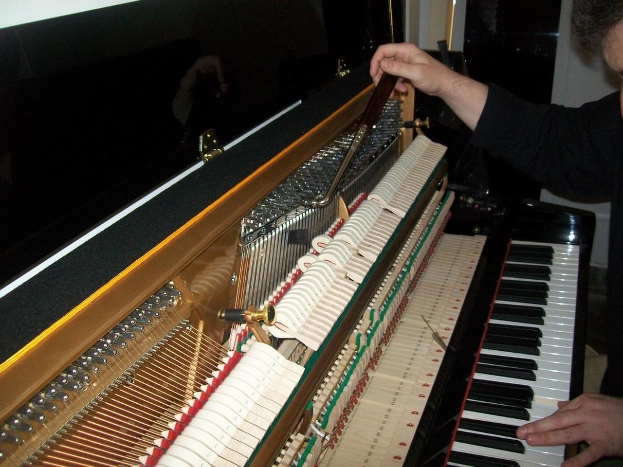 Afinador técnico de pianos . Lisboa - 4/5